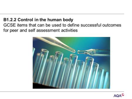 B1.2.2 Control in the human body