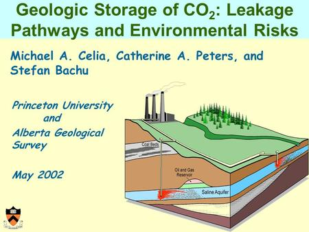 Geologic Storage of CO 2 : Leakage Pathways and Environmental Risks Michael A. Celia, Catherine A. Peters, and Stefan Bachu Princeton University and Alberta.