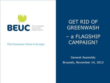 GET RID OF GREENWASH – a FLAGSHIP CAMPAIGN? General Assembly Brussels, November 14, 2013.