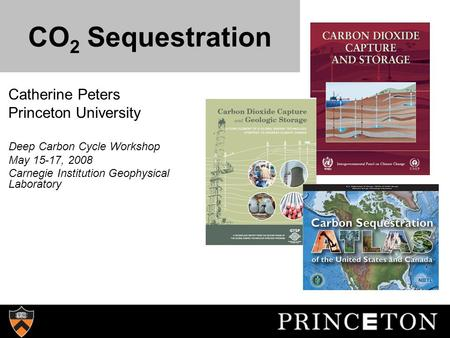 CO 2 Sequestration Catherine Peters Princeton University Deep Carbon Cycle Workshop May 15-17, 2008 Carnegie Institution Geophysical Laboratory.
