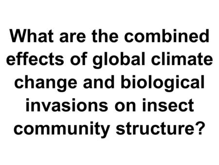 What are the combined effects of global climate change and biological invasions on insect community structure?