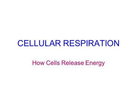 CELLULAR RESPIRATION How Cells Release Energy Aerobic Cellular Respiration 1. Glycolysis 4. Electron Transport System 3. Krebs Cycle Anaerobic Cellular.