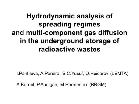 Hydrodynamic analysis of spreading regimes and multi-component gas diffusion in the underground storage of radioactive wastes I.Panfilova, A.Pereira, S.C.Yusuf,