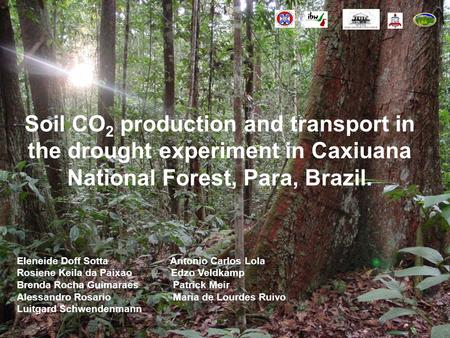 Soil CO 2 production and transport in the drought experiment in Caxiuana National Forest, Para, Brazil. Eleneide Doff Sotta Antonio Carlos Lola Rosiene.
