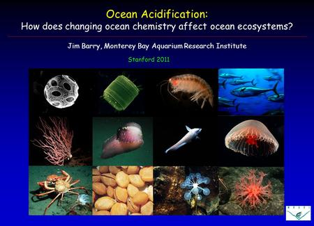 Stanford 2011 Ocean Acidification: How does changing ocean chemistry affect ocean ecosystems? Jim Barry, Monterey Bay Aquarium Research Institute.