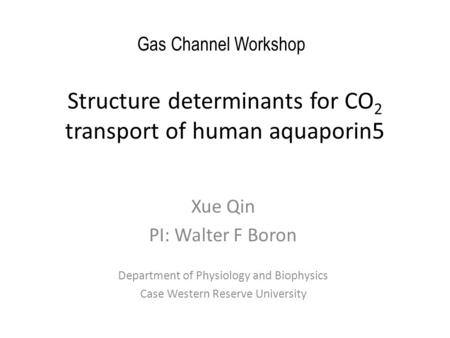 Structure determinants for CO 2 transport of human aquaporin5 Xue Qin PI: Walter F Boron Department of Physiology and Biophysics Case Western Reserve University.