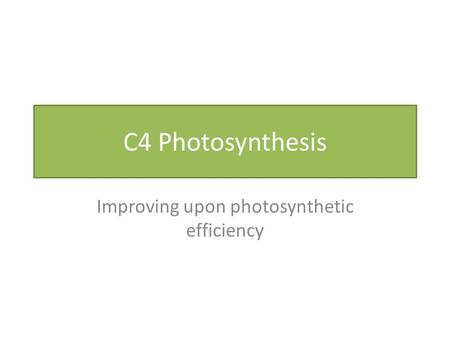 C4 Photosynthesis Improving upon photosynthetic efficiency.