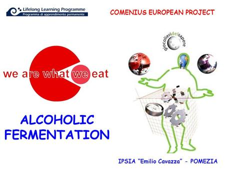 "COMENIUS EUROPEAN PROJECT IPSIA ""Emilio Cavazza"" - POMEZIA ALCOHOLIC FERMENTATION."