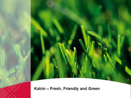 Katrin – Fresh, Friendly and Green. Our strong commitment to the environment forms an integral part of the Metsä Tissue business strategy, as it does.