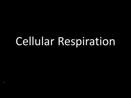 Cellular Respiration. Food Is broken down into 3 categories Lipids (Fats) Proteins Polysaccharides (Glucose)