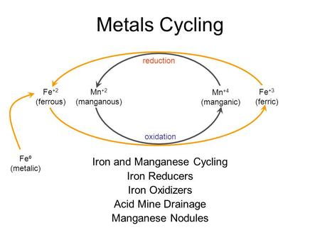 Iron and Manganese Cycling