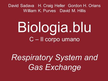 David Sadava H. Craig Heller Gordon H. Orians William K. Purves David M. Hillis Biologia.blu C – Il corpo umano Respiratory System and Gas Exchange.