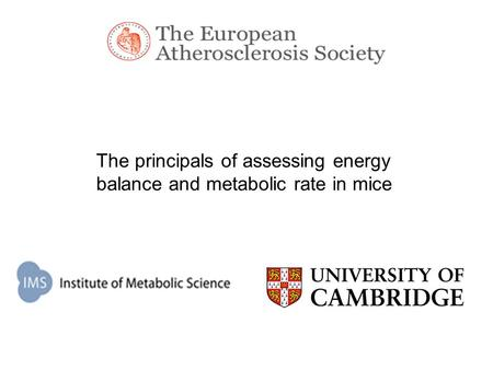 The principals of assessing energy balance and metabolic rate in mice.