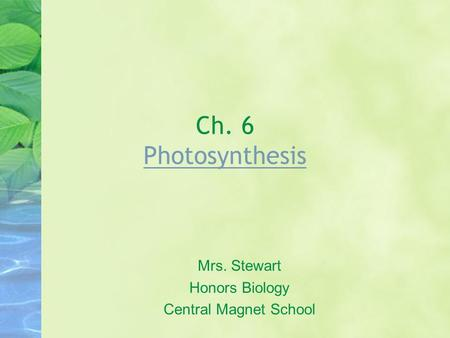 Ch. 6 Photosynthesis Photosynthesis Mrs. Stewart Honors Biology Central Magnet School.