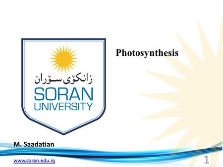 Www.soran.edu.iq M. Saadatian Photosynthesis 1. www.soran.edu.iq Photosynthesis.