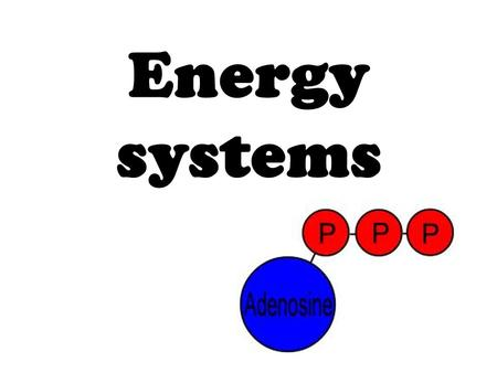 Energy systems. kreb cycle Series of chemical reactions in the mitochondria Oxidizes acetyl CoA to produce ATP (Adenosine Triphosphate = energy molecule.