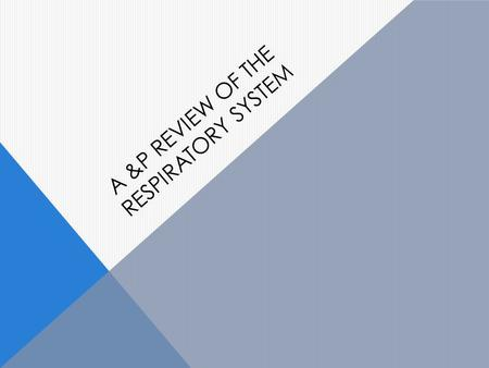 A &P REVIEW OF THE RESPIRATORY SYSTEM. Describe the principal functions of the respiratory system.
