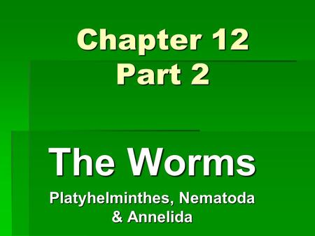 Chapter 12 Part 2 The Worms Platyhelminthes, Nematoda & Annelida.