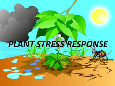 PLANT STRESS RESPONSE. STRESS Manifold unfavourable, but not necessarily immediately lethal conditions, occurring either permanently or sporadically in.