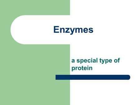 Enzymes a special type of protein.