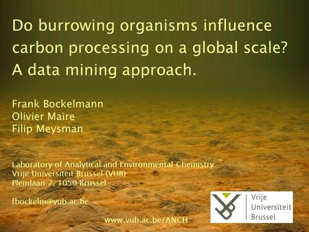 Do burrowing organisms influence carbon processing on a global scale?