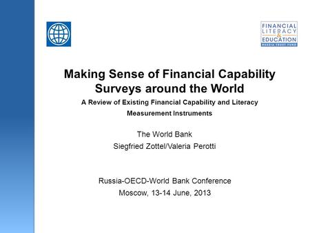 Making Sense of Financial Capability Surveys around the World A Review of Existing Financial Capability and Literacy Measurement Instruments The World.