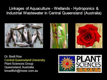 Linkages of Aquaculture - Wetlands - Hydroponics & Industrial Wastewater in Central Queensland (Australia) Dr. Brett Roe Central Queensland University.