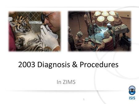 2003 Diagnosis & Procedures In ZIMS 1. Business Rules Diagnosis & Procedures have complex Business Rules These Business Rules must be followed or you.