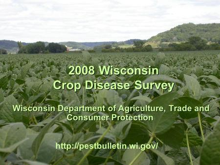 2008 Wisconsin Crop Disease Survey 2008 Wisconsin Crop Disease Survey Wisconsin Department of Agriculture, Trade and Consumer Protection Wisconsin Department.