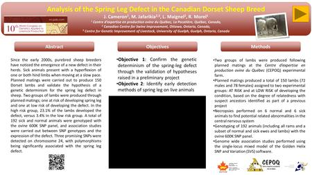 Analysis of the Spring Leg Defect in the Canadian Dorset Sheep Breed J. Cameron 1, M. Jafarikia 2,3, L. Maignel 2, R. Morel 1 1 Centre d'expertise en production.