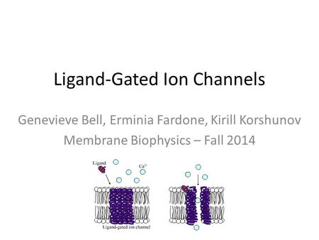 Ligand-Gated Ion Channels Genevieve Bell, Erminia Fardone, Kirill Korshunov Membrane Biophysics – Fall 2014.