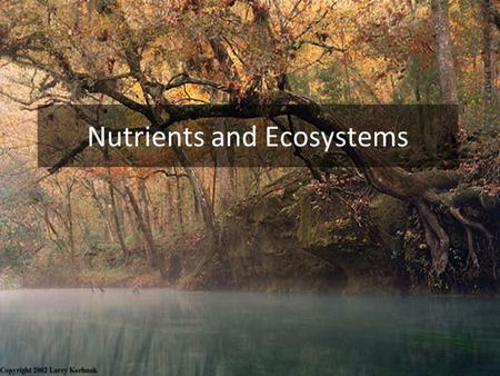 Nutrients and Ecosystems. Fertilizer Application Rates Lawns: 80-240 kg N/ha/yr Athletic Fields: 200-280 kg N/ha/yr Pastures (Dairy): 240-360 kg N/ha/yr.