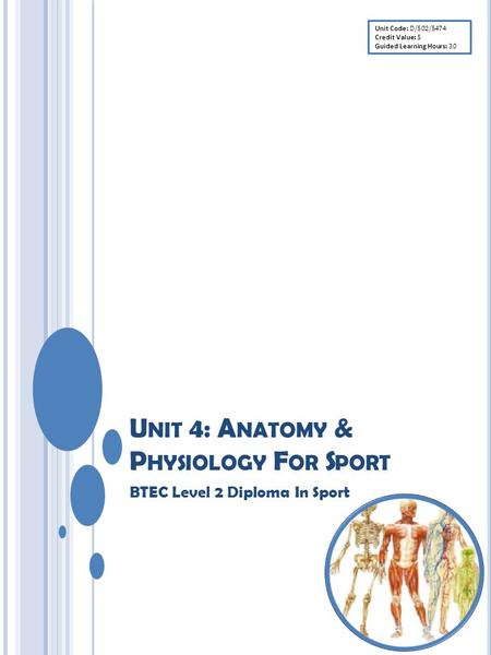 U NIT 4: A NATOMY & P HYSIOLOGY F OR S PORT BTEC Level 2 Diploma In Sport Unit Code: D/502/5474 Credit Value: 5 Guided Learning Hours: 30.