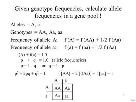 1 Given genotype frequencies, calculate allele frequencies in a gene pool ! Alleles = A, a Genotypes = AA, Aa, aa Frequency of allele A: f (A) = f (AA)