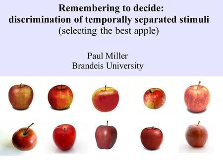 Remembering to decide: discrimination of temporally separated stimuli (selecting the best apple) Paul Miller Brandeis University.