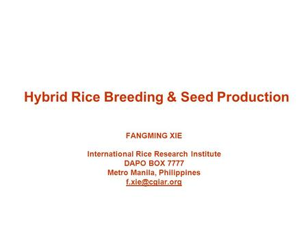 Hybrid Rice Breeding & Seed Production