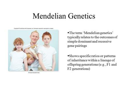 Mendelian Genetics The term 'Mendelian genetics' typically relates to the outcomes of simple dominant and recessive gene pairings Shows specific ratios.