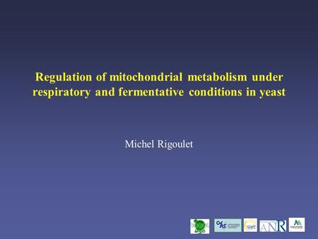 Regulation of mitochondrial metabolism under respiratory and fermentative conditions in yeast Michel Rigoulet.