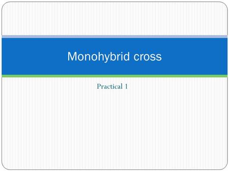 Practical 1 Monohybrid cross. Learning objectives: By the end of the lesson you should be able to: Solve problems in relation to monohybrid crosses from.