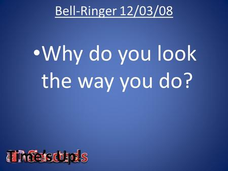 Bell-Ringer 12/03/08 Why do you look the way you do?