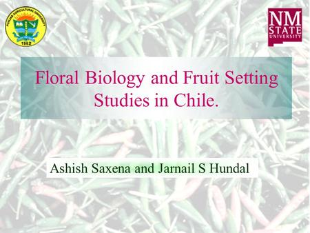 Floral Biology and Fruit Setting Studies in Chile. Ashish Saxena and Jarnail S Hundal.