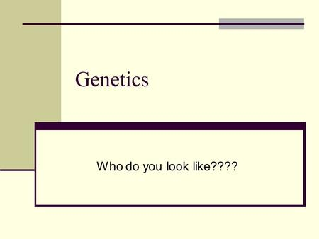 Genetics Who do you look like????. Vocab Homozygous dominant/ homozygous recessive Heterozygous Genotype/ phenotype Gamete Hybrid Gene Segregation P/