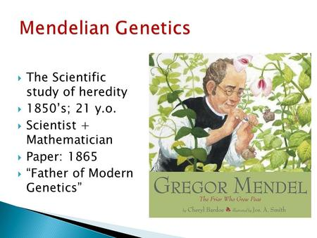 Mendelian Genetics The Scientific study of heredity 1850's; 21 y.o.