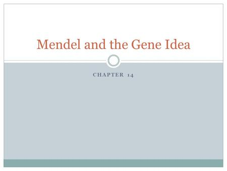 CHAPTER 14 Mendel and the Gene Idea. Gregor Mendel Known as the father of modern genetics. Austrian monk who studied pea plants in an abbey garden. Started.