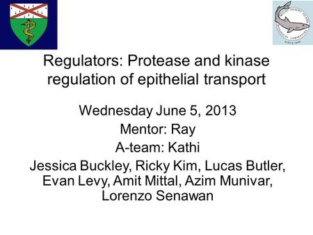 Regulators: Protease and kinase regulation of epithelial transport Wednesday June 5, 2013 Mentor: Ray A-team: Kathi Jessica Buckley, Ricky Kim, Lucas Butler,