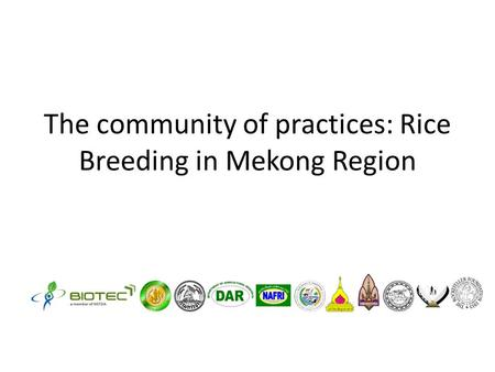 The community of practices: Rice Breeding in Mekong Region.