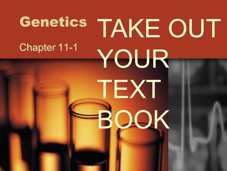 Genetics TAKE OUT YOUR TEXT BOOK Chapter 11-1.