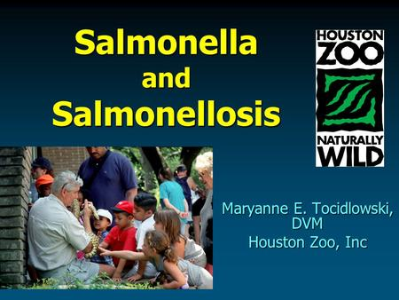Salmonella and Salmonellosis Maryanne E. Tocidlowski, DVM Houston Zoo, Inc.