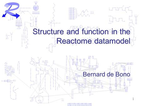 1 Structure and function in the Reactome datamodel Bernard de Bono.