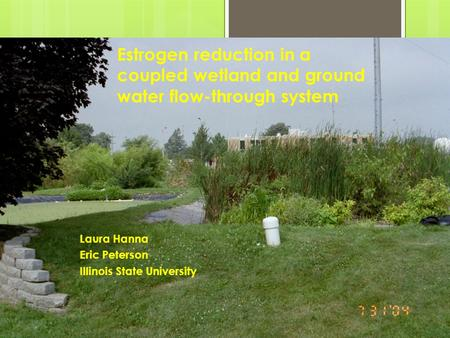 Estrogen reduction in a coupled wetland and ground water flow-through system Laura Hanna Eric Peterson Illinois State University.